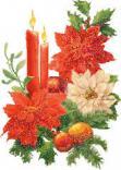 Festività Natalize 2015 - pungitopo e candele